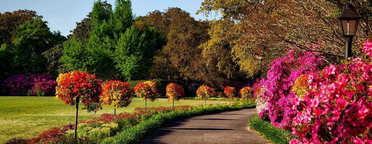 Prunkande allé med jord från Hasselfors Garden